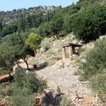Природа парка Аскос