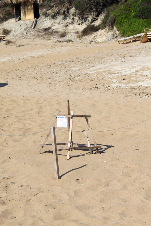 Кладка яиц черепах Каретта-Каретта на пляже Геракас