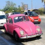 Розовый раритет